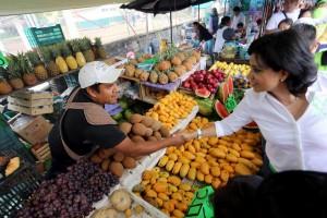 Haremos-de-Xalapa-ejemplo-de-desarrollo-en-la-zona-centro-sur-del-país-Elízabeth-Morales