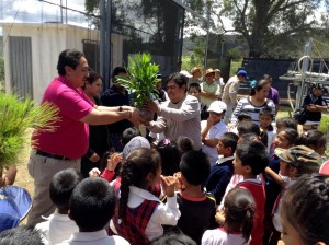 Ecología-municipal-anuncia-la-realización-de-la-Primera-Campaña-de-Reforestación-2015-2